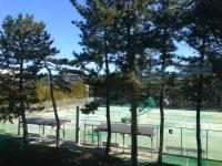 袖ケ浦体育館・テニスコート